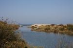 28 okt Vi når havet strax norr om Ceserea